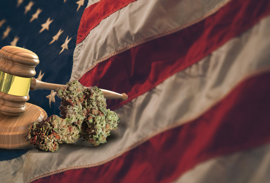 The Current Legal Situation Of CBD In The United States – Top Things You Need To Know!