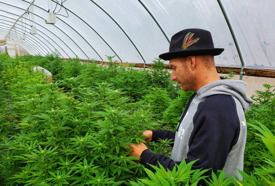 What the New Farm Bill Mean to the CBD Industry?